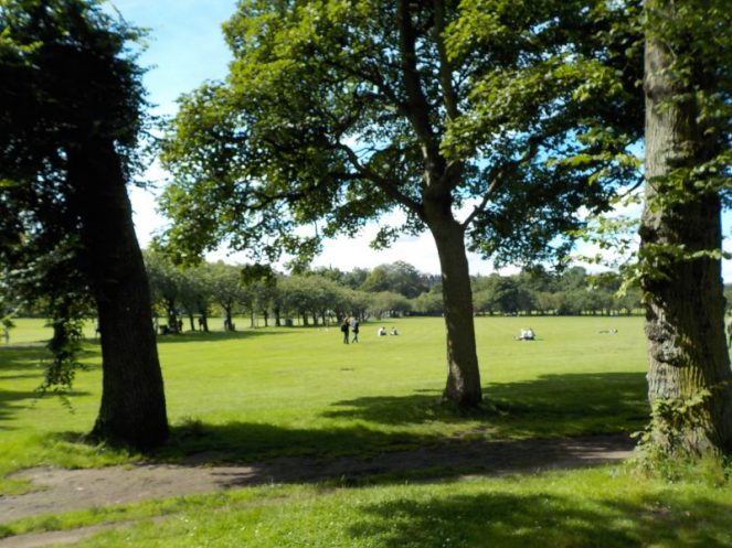 The Meadows - Edinburgh Festivals